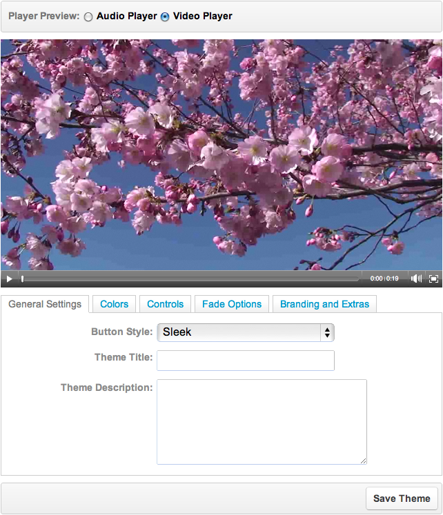 Video Player Theme Editor